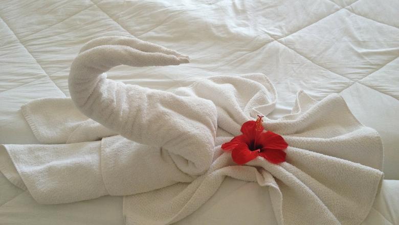 Käterätikust volditud luik voodil